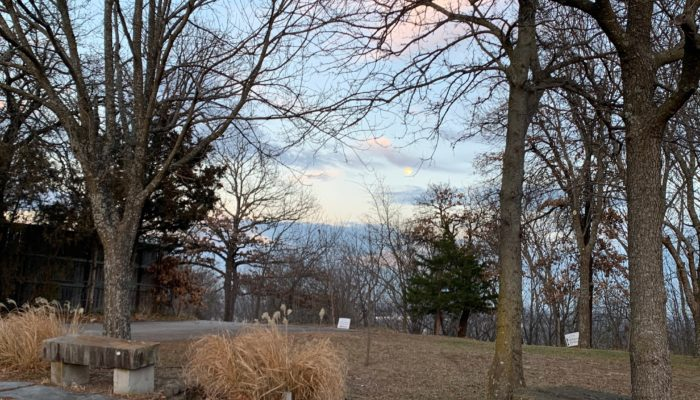 An almost-full moon rises in a blue and pink sky over bare trees and brown grass